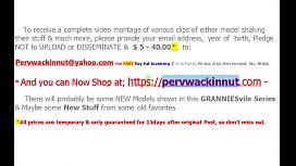 65th Web Models of Granniesville (Promo)