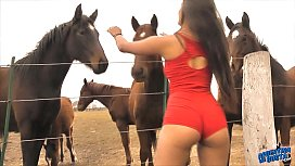 The Hot Lady Horse...