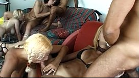 Wild orgy with transsexuals...
