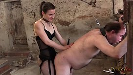 Strap-On Compilation - All...