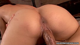 Bound Asian hottie receives a rough cunt and ass fucking
