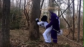 Fursuit Couple Mating in Woods thumbnail