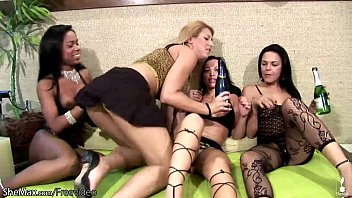 Shemale bick dick Horny shemale foursome play with their shecocks