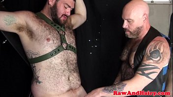 Hairy chests bear Bonded sub bear spitroasted by inked chubbies