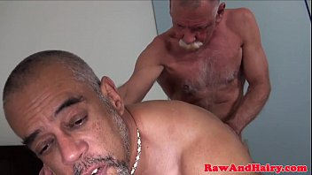 Gay grey bears Grey wolf sucks black mature before fucking