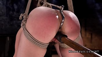 Hogtied bondage 2010 jelsoft enterprises ltd Anal plugged slave pussy rough banged
