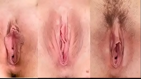 What Kind Of Pussy Do You Prefer? Thumb