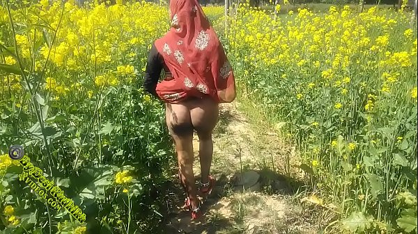 Punjabi Desi Sex  Imo Xxx Video