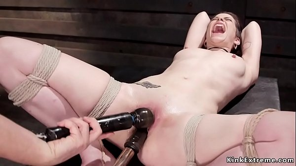 Shaved pussy tied brunette toyed on hogtie
