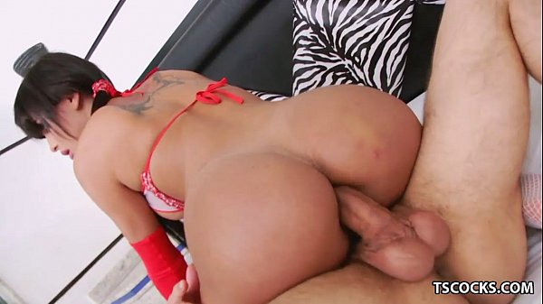 Bruna butterfly ts Ts Bruna Butterfly And Max Scar Playing With Each Other Xvideos Com