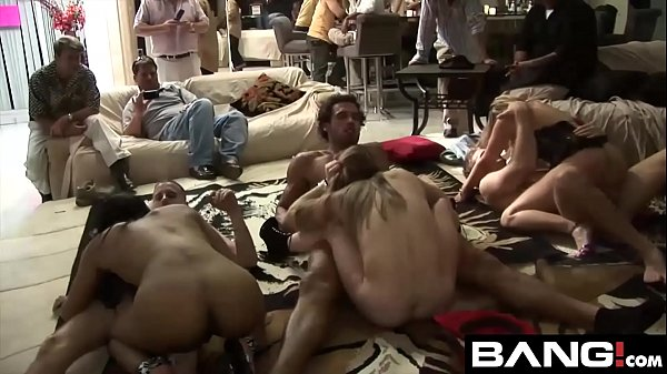 Best of Orgy Parties Collection Vol 3 Thumb
