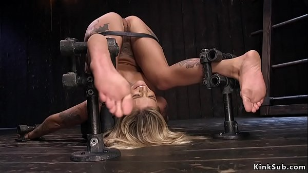 Big tits alt blonde hottie in device bondage