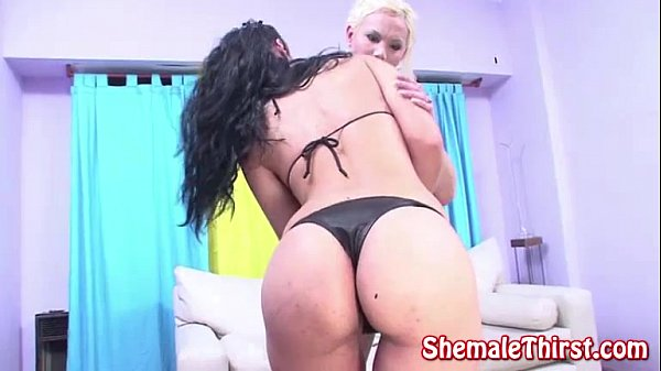 Transsexual prostitutes 45 scene 3 sample