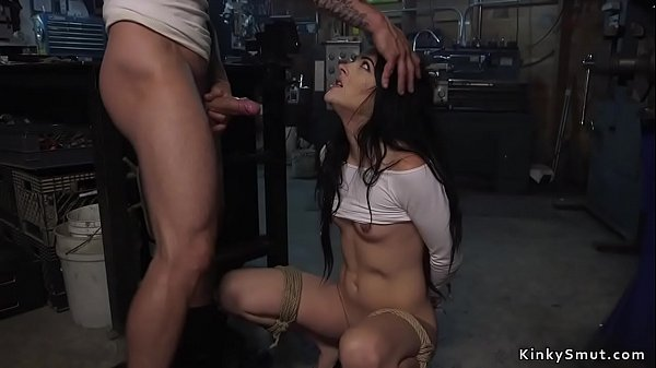 Brunette babe anal fucked by repairman Thumb