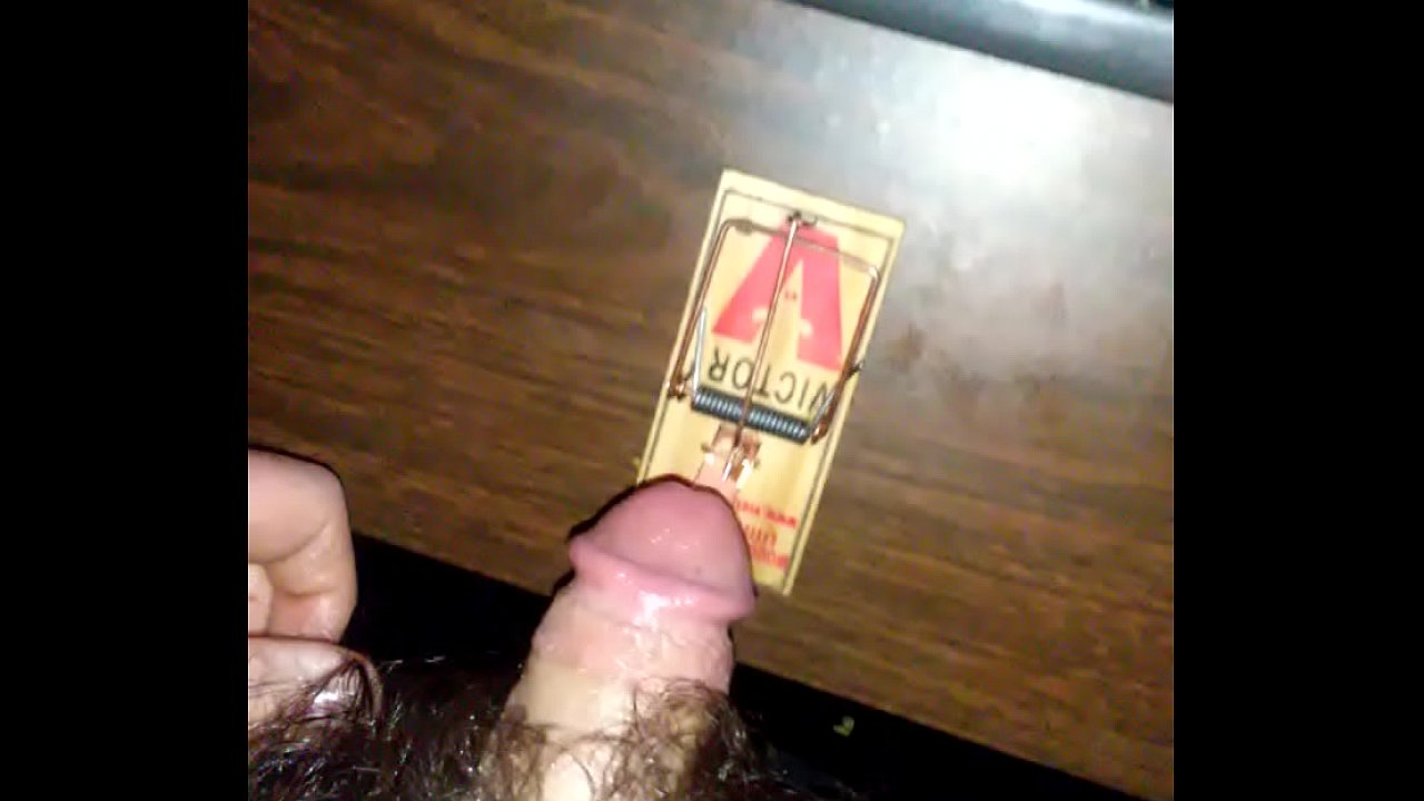 Penis In Mouse Trap