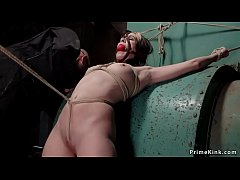 Babe taken and tormented in hogtie