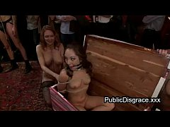 thumb three babes rou  gly fucked at orgy party rgy  orgy party rgy party