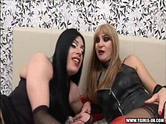 Shemale and transsexual fucking...