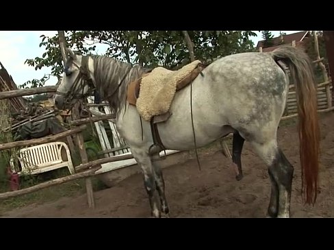 cover video orsay peed in farm 2