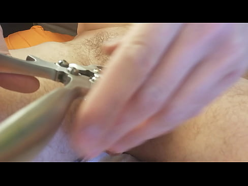 Castration play with Burdizzo 1