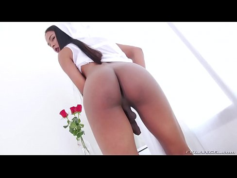 exotic tranny bee enjoys anal sex
