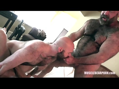 Cock Hungry Cum Pigs